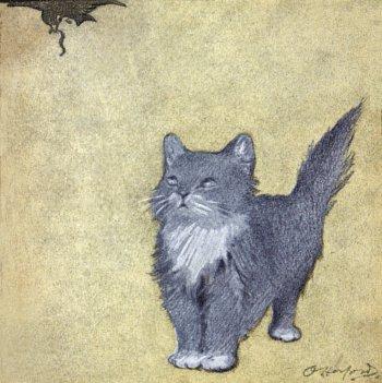 The Rubaiyat of A Persian Kitten
